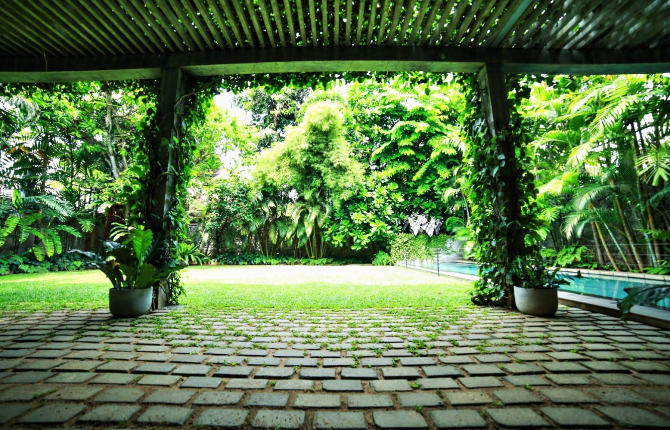 Landscaping in sri lanka landscape design gardening for Sri lankan landscaping plants