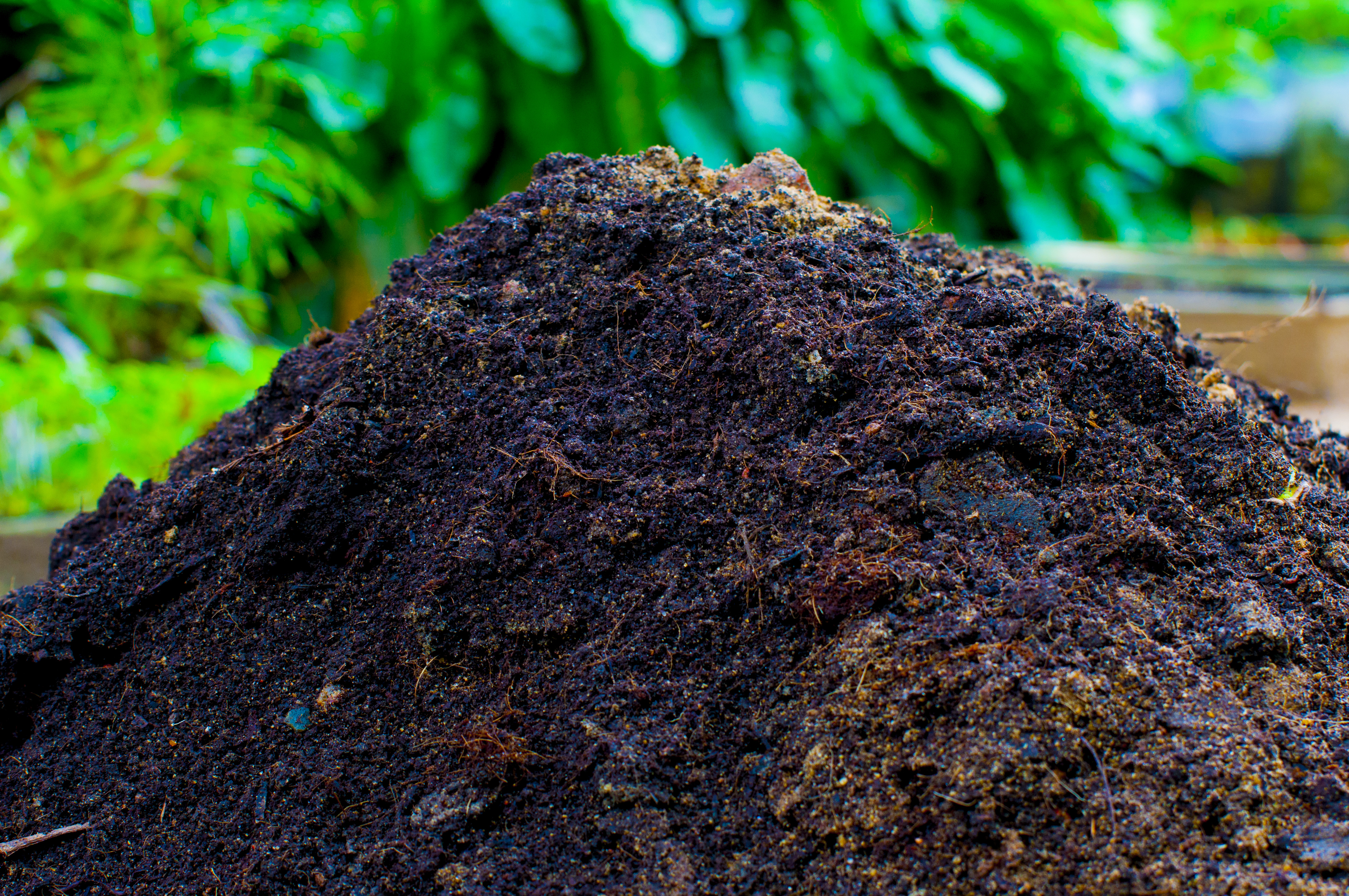 Flower Fertilizer Sri Lanka | Flower Compost Suppliers